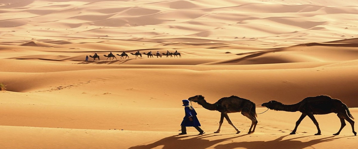 Morocco Desert Trips Marrakech 7 Days